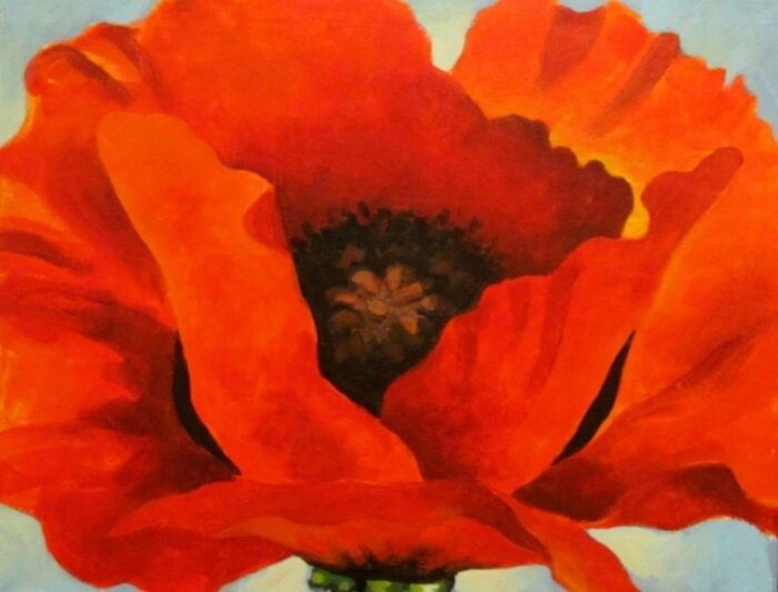 A closeup painting of a red poppy with a dark center on a gray background.